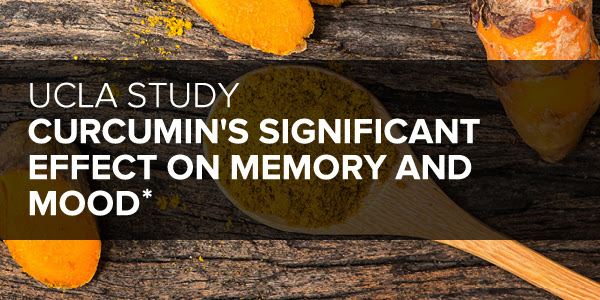 Curcumin and Memory